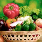 hábitos nutricionales verano
