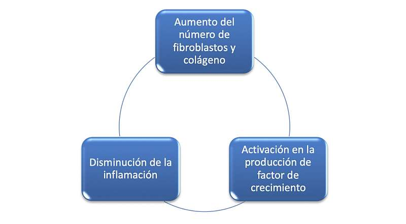zimmer terapia inductiva