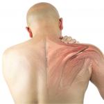 Patologías de hombro. ¿Cuántas hay y a cuántos afecta? ¿Eres uno de ellos?